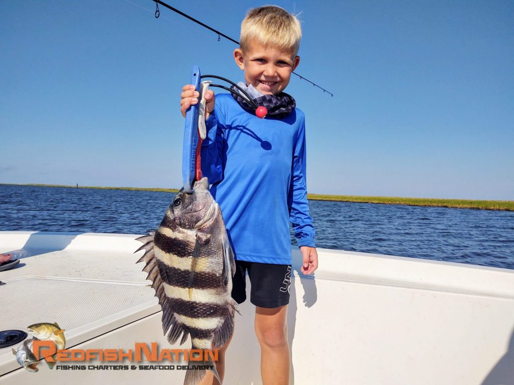 Guided Louisiana Fishing Charter - Redfish Nation - Sheepshead Catch